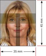 Augenbereich
